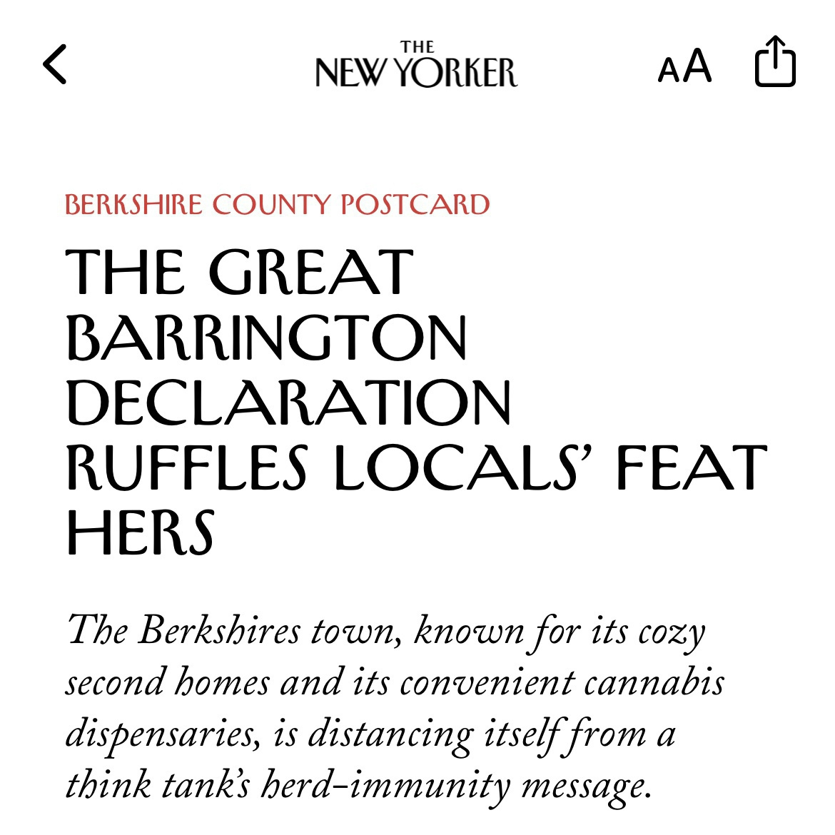 New Yorker article from iPhone with headline: THE GREAT BARRINGTON DECLARATION RUFFLES LOCALS' FEAT HERS